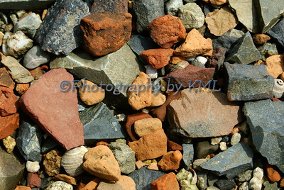 macro of rocks and shells along the shore