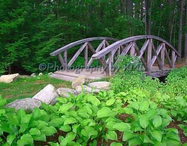 a wood foot bridge in the summer