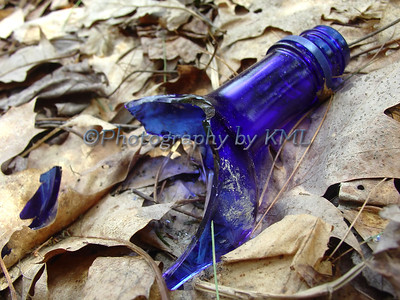 broken blue bottle in the woods