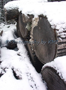 the wood pile covered with snow