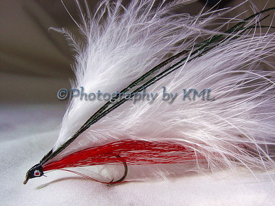 fly tied hook for fly fishing