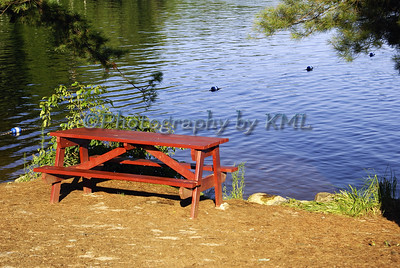 an empty picnic table beside the lake