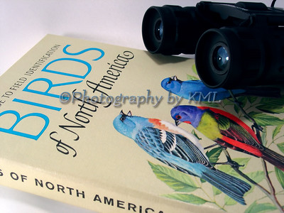 bird watching book and binoculars