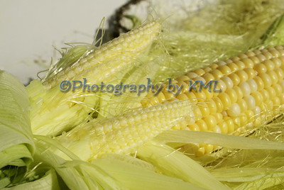 an ear of corn with two little ones attached